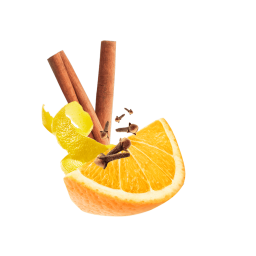 Orangenspalte, Zitronenschale, Zimtstangen und Nelken