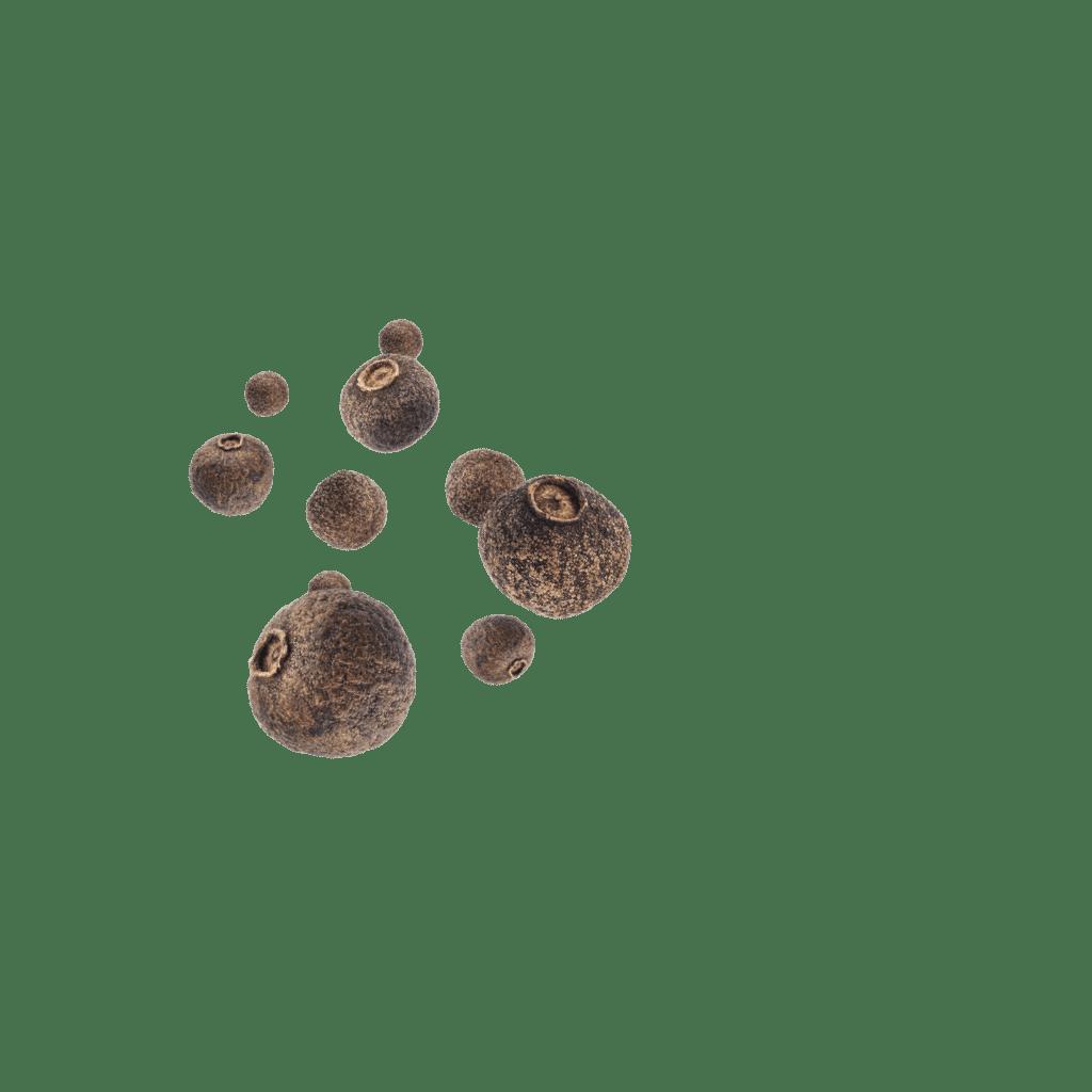 schwebende Pimentkörner