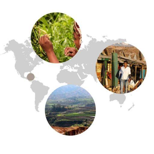 Ursprungsgebiet von Vanille auf der Weltkarte: Mittelamerika