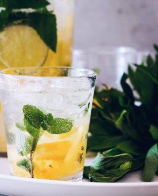 Glaswasser mit einem Minzzweig und Zitrone