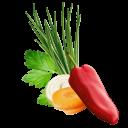 Salatkraeuter Kotanyi Inhalt Edit