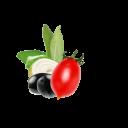 Tomato Olive Content Ru