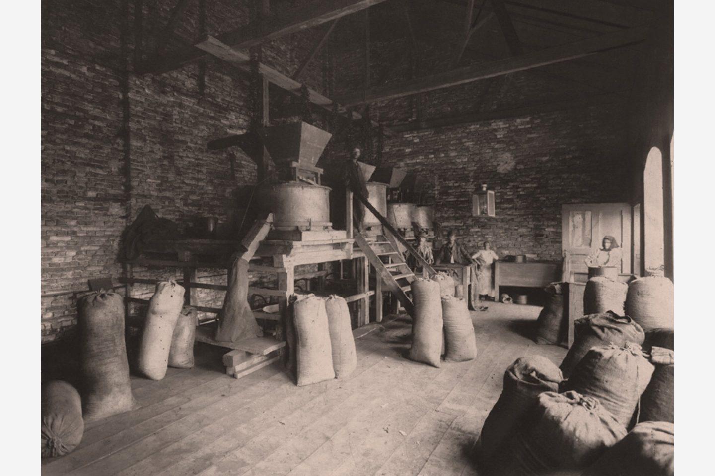 Черно-белая фотография: мешки с молотой паприкой Kotányi, 1881год