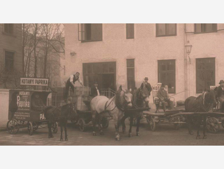 Черно-белая фотография: доставка паприки на конном экипаже, 1881год