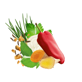 Avocado Salat Min